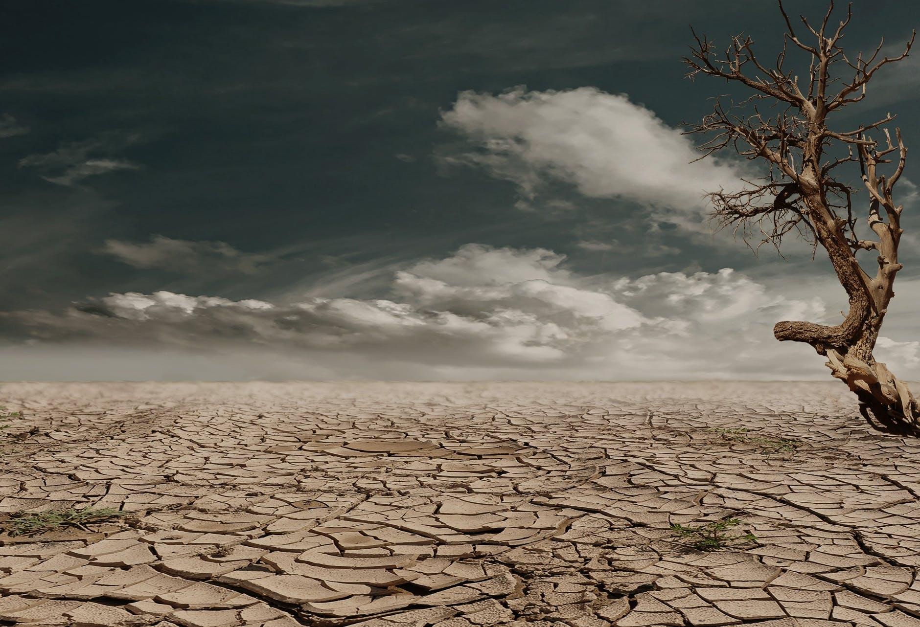 earth desert dry hot