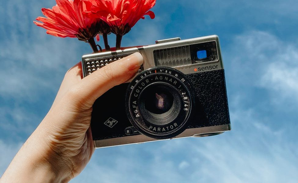 woman showing retro photo camera and holding blooming flower